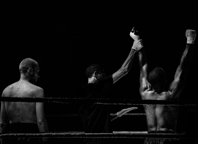 mieszane sztuki walki