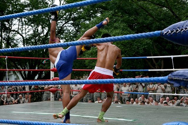 sztuki walki ring