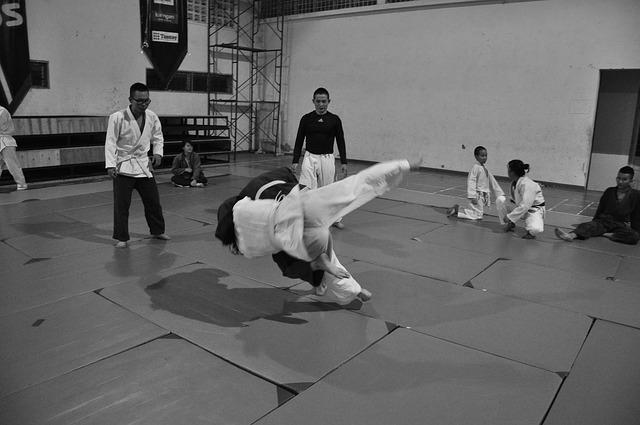 walki judo